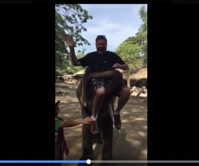 How to Ride an Elephant
